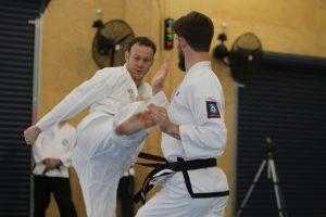 Taekwondo for adults