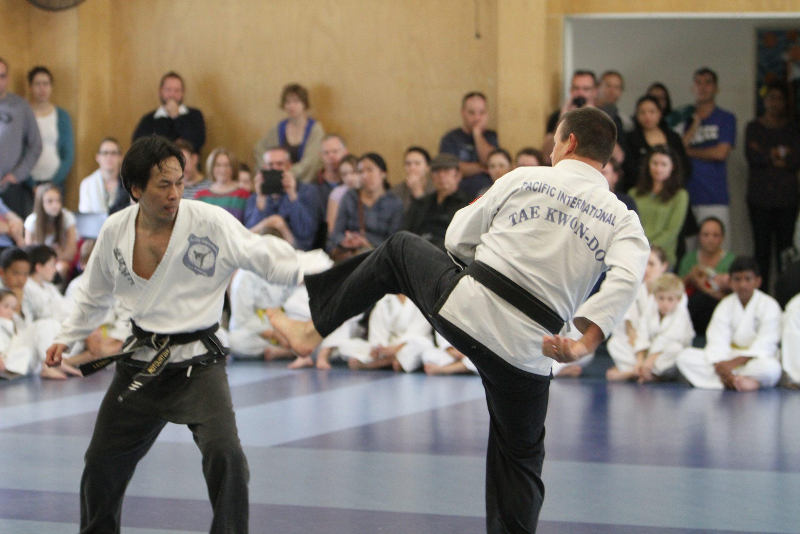 Taekwondo lessons for adults
